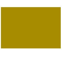 sonberk_logo